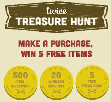 teice-treasure-hunt