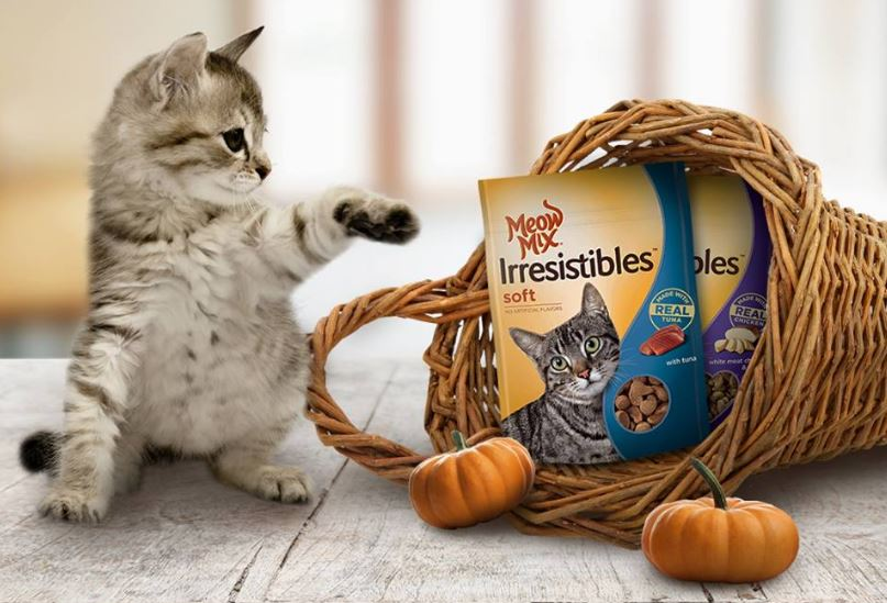 picture relating to Meow Mix Coupon Printable referred to as Fresh Printable Discount coupons toward Help save Stack upon Meow Mixture