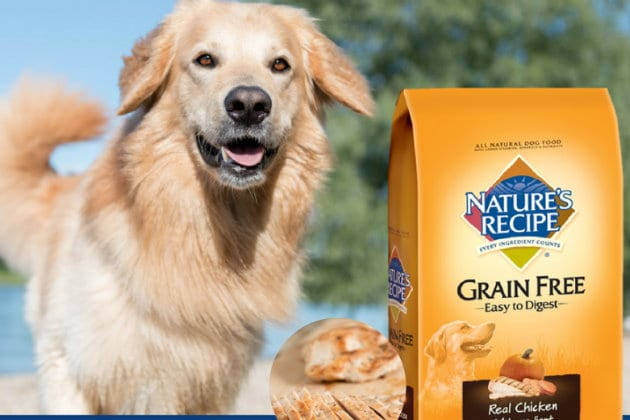picture regarding Dog Food Coupons Printable identified as $5 in just Contemporary Printable Coupon codes for Natures Recipe Puppy Meals